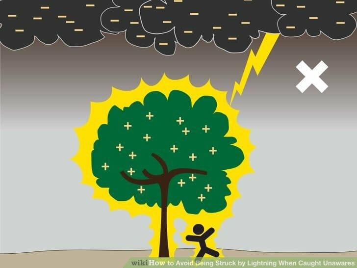 Không nên đứng dưới gốc cây
